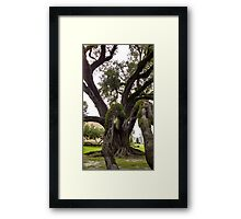 Wild Tree Framed Print