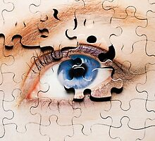 Jigsaw Eye by Andrew Bret Wallis