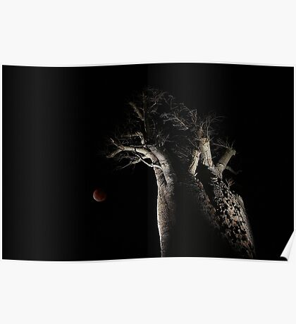 The Blood Moon And The Boab Tree Poster