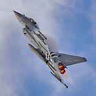 Eurofighter Typhoon (D-Day Stripes) by © Steve H Clark Photography
