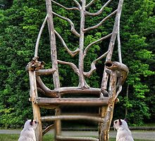 """"""" LOOK"""" A CHAIR MADE FOR TWO """" by ✿✿ Bonita ✿✿ ђєℓℓσ"""