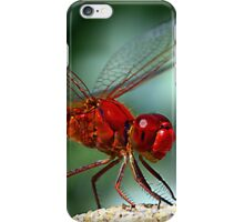 Enter the Dragon iPhone Case/Skin