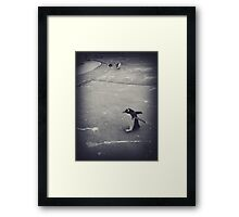 It's just a penguin Framed Print