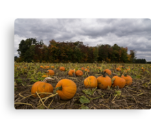 Getting Ready for Halloween Canvas Print