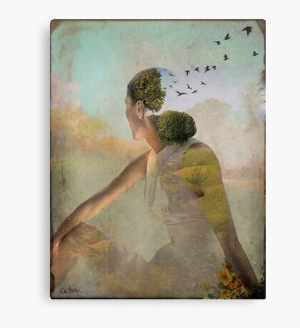 Summer Dreaming Canvas Print