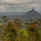 Glasshouse Mountains 2 by Werner Padarin