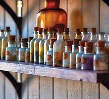 Chemist - Magical Ingredients by Mike  Savad