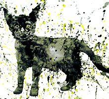 BLACK CAT by lautir
