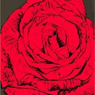 rose red by andley