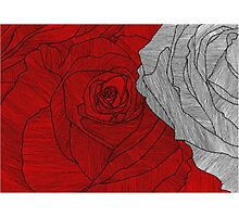 rose outline red Photographic Print