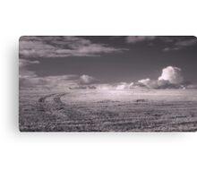Sky Field Canvas Print