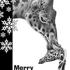 Giraffe and Calf Christmas Card by Lorna Mulligan
