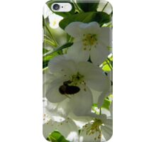 Blossoming iPhone Case/Skin