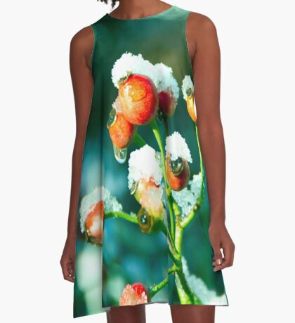 Rose Hips in winter A-Line Dress