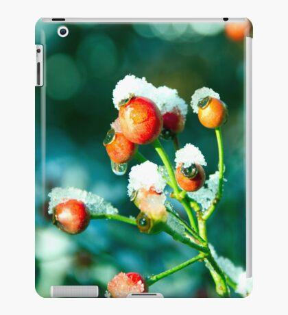 Rose Hips in winter iPad Case/Skin