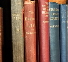 Antique Bookshelf Sticker