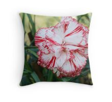 colored flowers in spring Throw Pillow
