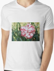 colored flowers in spring Mens V-Neck T-Shirt