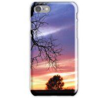 Solitude Peace iPhone Case/Skin