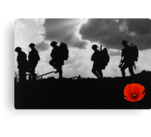 Poppy Appeal 2014 Canvas Print