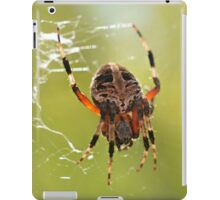 Orb Weaver Spider iPad Case/Skin