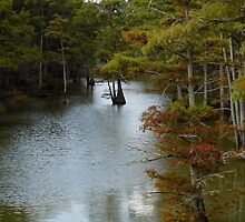 Crooked Old Creek by WildestArt