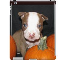 HAPPY HALLOWEEN !! iPad Case/Skin