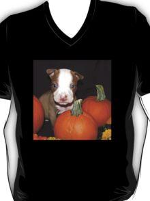 HAPPY HALLOWEEN !! T-Shirt