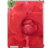 red Roses grow in Mo's garden iPad Case/Skin