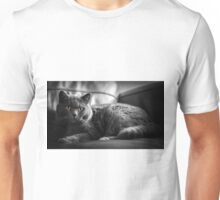 cuddly cat  Unisex T-Shirt