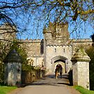 Powderham Castle by Charmiene Maxwell-Batten