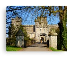 Powderham Castle Canvas Print