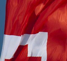 Waving Flag of Tonga From 2014 Winter Olympics by pjwuebker