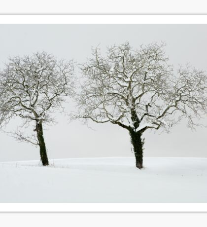 Two trees in the snow Sticker