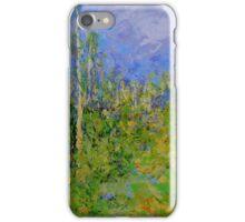 birch trees landscape iPhone Case/Skin