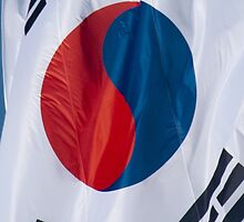 Waving Flag of South Korea From 2014 Winter Olympics by pjwuebker