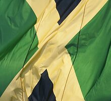 Waving Flag of Jamaica From 2014 Winter Olympics by pjwuebker