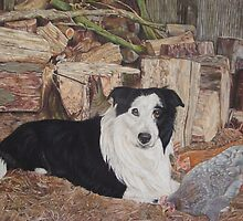 border collie in log shed with chickens portrait by pollywolly