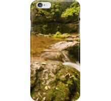 Janet's Foss iPhone Case/Skin
