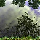 Reflection in the Lake #2 by HeklaHekla
