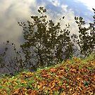 Reflection in the Lake #4 by HeklaHekla