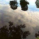 Reflection in the Lake #6 by HeklaHekla