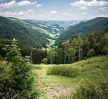 Vosges Mountains by Sue Martin