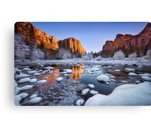 Ice Age Canvas Print