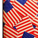 Stars and Stripes by Ed Sweetman