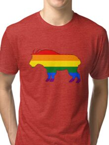Rainbow Mountain Goat Tri-blend T-Shirt