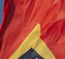 Waving Flag of East Timor From 2014 Winter Olympics by pjwuebker