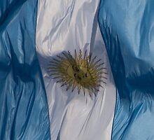 Waving Flag of Argentina From 2014 Winter Olympics by pjwuebker