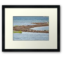 Photography of a strip of land in the sea Framed Print