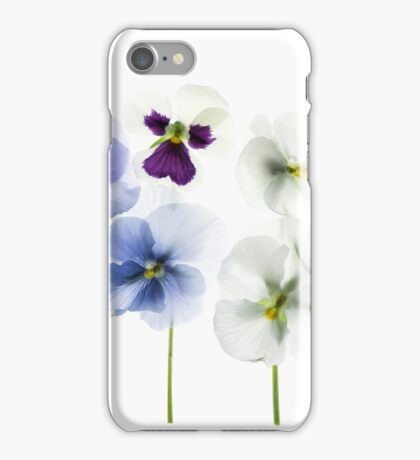 backlit pansy petals on a lightbox  iPhone Case/Skin